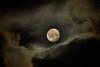 in the sea of clouds (Andreas Höschel) Tags: mond moon luna nacht himmel sky wolken clouds sony a77 200mm tamron genthin jerichowerland sachsenanhalt deutschland germany sonyflickraward