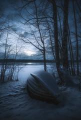 January night (petrisalonen) Tags: finland night nightphotography nature winter snow moon light blue frost freezing