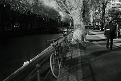 spring light@KÖ, Düsseldorf 2 (Amselchen) Tags: bicycle bokeh blur dof depthoffield mono monochrome bnw blackandwhite lightandshadow shadow kö düsseldorf germany fujifilm fujifilmxseries xt2 zeiss carlzeiss touit1832 fujifilmxt2