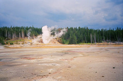 Yellowstone, WY (buddу) Tags: usa us america yellowstone nature forrest outdoors adventure film analog 35mm