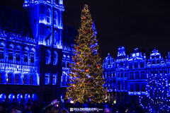 DSC_0557 (Binya Photographe) Tags: winter hiver festivity christmas christmasmarket grandplace sapin noel lights light show balls tree christmastree fête celebration brusselsbynight night binyaphotography binya binyaphotographeisreadytoshootinanystylefromoldorvintagetonewandmodernbwblackwhiteorcolours belgianphotographer binyaphotographe binyafotografie charmfull wonderful city brussels bruxelles bruxellois brussel brusselsphotographer amazingbeauty amazing feest lovely love happiness happy joy jolie landscape paysage hollidays winterholidays vacances fromthecutepetgivingahugtoachildtothenicenudewomanwithhighheelsandshowinghersexyshavesandlegsicanproposeyouanykindofpicture createyourstyleandbookmeforanyshootatyourhomeduringsmallvacationattheseasideorbigholidaysaroundtheworldorevenatworkshootspossiblewithsunlightorartificiallight