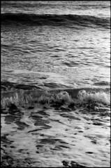 Mer, mon enfance (Rachelnazou) Tags: caffenol blackwhite analog argentique minolta film