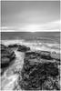 a few rocks (Steven Peachey) Tags: mono monochrome blackwhite seascape northeastcoast canon canon5dmarkiv ef24105mmf4l lee09gnd stevenpeachey beach