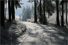 Waldweg ins Licht (linke64) Tags: thüringen natur landschaft licht wald bäume deutschland winterwald weis weg rahmen reif winter waldweg germany