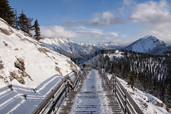 The Windswept Boardwalk (Kristin Repsher) Tags: alberta banff banffgondola banffnationalpark canada canadianrockies d750 nikon pinetrees rockies rockymountains snow sulphurmountain winter