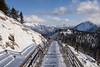 The Windswept Boardwalk (Kristin Repsher) Tags: alberta banff banffgondola banffnationalpark canada canadianrockies d750 nikon pinetrees rockies rockymountains snow sulphurmountain winter