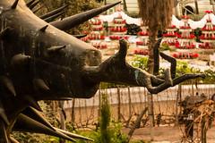 The Claw (teltone) Tags: sonyrx100iv sony street cornwall raw vacation holiday winter uk england aperturepriority fab scouser travel european edenproject eden garden bio