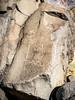 Petroglyphs Near Fish Springs (dwblakey) Tags: archaeology california inyocounty owensvalley fishspringhill desert easternsierra bigpine petroglyphs history outdoors outside fishsprings paiute rockart rocks unitedstates us