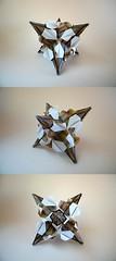 Igel (12 units) - Ekaterina Lukasheva (Rui.Roda) Tags: origami papiroflexia papierfalten modular igel twelve 12 units ekaterina lukasheva