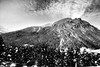 2018-01-15_06-13-56-01 (MILESI FEDERICO) Tags: milesi milesifederico montagna montagne mountain italia italy iamnikon inmontagna inverno ice wild winter piemonte piedmont visitpiedmont valsusa valliolimpiche valdisusa valledisusa cittàmetropolitanaditorino freddo nikon nikond7100 nital natura nature nat neve nevicata snow 2018 gennaio alpi alpicozie altavallesusa altavaldisusa d7100 dettagli details paesaggio panorama landscape cesana cesanatorinese bianconero bw biancoenero blackandwhite blackwhite monocromatico desaturazione alberi albero ngc ngg europa europe explorer