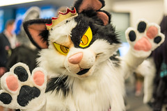 DSC01476 (Kory / Leo Nardo) Tags: furry fursuit suiting dance party dj con convention further confusion fc san jose marriott center 2018 fc2018 pupleo leo kory fur costume costuming cosplay animals