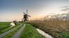 Cold sunrise at Broekmolen (2) (Rob Schop) Tags: wideangle zonsopkomst f56 sunrise winter sonya6000 molens nederland outdoor ochtend morning hoyaprofilters pola broekmolen samyang12mmf20 wind windmill a6000 landscape colours oudalblas