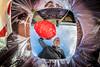 Yes honey, i'll put the trash outside! (M van Oosterhout) Tags: selfie selfportrait portrait unusual places photography dutch nederland portret alphen aan den rijn netherlands