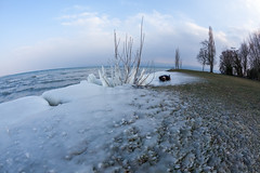 FDT 30.2 - Cold (EOS.5Dan) Tags: cold ice glace froid eau lac lake léman gland vaud suisse switzerland 5dmarkii 15mmfisheye fisheye canon facedown fdt tuesday