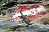 Auf der grünen Wiese... (Andrea Nagl) Tags: andreanagl krokodil aufdergrünenwiese schobergruppe hohe tauern nationalpark kunstimöffentlichenraum intervention mixed media nagl ~ wintersberger