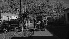 mesa 00782 (m.r. nelson) Tags: mesa arizona america southwest usa mrnelson marknelson markinazstreetphotography urbanmarkinaz blackwhite bw monochrome blackandwhite artphotography