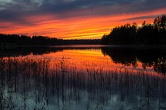 Sunset (Stefano Rugolo) Tags: stefanorugolo pentax k5 pentaxk5 smcpentaxda1855mmf3556alwr sunset sweden sverige lake water sky colors reflection silhouette landscape tree reeds cloud mirror mist
