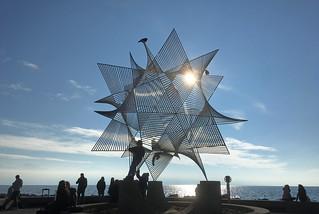 Jour et nuit... sous le soleil une étoile....