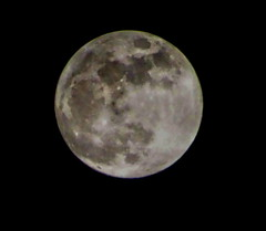Waxing Gibbous Moon: 98% illumination (peggyhr) Tags: peggyhr moon dsc05871a vancouver bc canada waxinggibbousphase 98illumination moongiant sonydschx80 january302018 carolinasfarmfriends sacredmoon