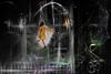 IN BETWEEN (AlicePopkorn) Tags: virtualreality energy space matrix holographicprojection hologram hologramm realität virtuelle timeandspace inbetween dream dreamworld traum