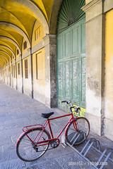 la bici vermella (_perSona_) Tags: toscana tuscany italy italia bike bici bicicleta bicycle red roja lucca luca door porta puerta vermella