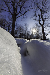 The Depths of Winter (wilbias) Tags: winter snow cold temperature snowcapped frozen snowy snowfall vertical north evans new york state outdoors