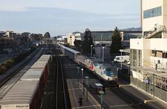Amtrak 5 - Emeryville (imartin92) Tags: emeryville california amtrak passenger train californiazephyr railroad ge generalelectric veterans p42dc genesis locomotive