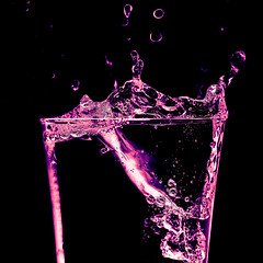 Macro Mondays - In A Bottle (roseysnapper) Tags: macro mondays nik software nikkor 105mm micro f28 nikon d810 silver efex pro 20 black background close up bottle split toning square crop format lightroom photoshop abstract bubbles carafe splash water
