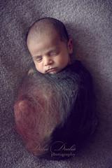 newborn session (Dalia Drulia) Tags: newborn newbornny newbornphotographerny newbornphotographynyc druliaphotography druliaphoto inafant infantphotographerny babies babyphotographer kids kidsphotographerny