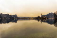 Come d'incanto (forastico) Tags: forastico d7000 bled slovenia lago tramonto