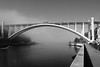 Bridge (Francisco (PortoPortugal)) Tags: 0342018 20171003fpbo6320 bw nb pb monochrome monocromático ponte bridge pontedaarrábida arrábidabridge riodouro douroriver nevoeiro fog rio river porto portugal portografiaassociaçãofotográficadoporto franciscooliveira