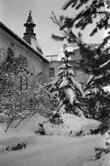 Novospassky monastery (krusander) Tags: smena smenasymbol ilford ilfordfp4 ilfotecddx