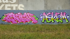 Shine & Askem... (colourourcity) Tags: streetartaustralia streetartnow graffiti melbourne burncity awesome colourourcity nofilters letters wildstyle burners bunsen streetart allthoseshapes loveletters bigburners askem ask arsk sdm adn mdr shine dia mai pink hotpink