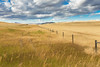 Freedom (artvbal) Tags: montana usa freedom prairie field rural grass fence route287 countryside landscape september 2016 artwork photo art topaz