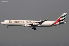 Emirates Airlines (EK/UAE) / A340-313X / A6-ERT / 01-16-2013 / HKG (Mohit Purswani) Tags: emiratesairlines ek uae dubai unitedarabemirates hkg hkia clk vhhh hongkong arrival landing finalapproach haze a6ert widebody civilaviation commercialaviation planespotting aviationphotography flight ahkgap canon 7d a340 a343 airbus airbusindustrie airbusa340 a340300