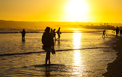 "Endless Summer (KC Mike Day) Tags: beach sun sunlight sunset yellow water tide wading ocean pacific coronado ""san diego"