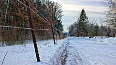 Frost on the Wire (Bob's Digital Eye) Tags: bobsdigitaleye canon efs24mmf28stm feb2018 fence flicker flickr landscape lowangle snowscene t3i winter wintercolour winterinmn
