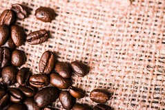 Brown roasted coffee beans (sector71) Tags: coffee bean brown roasted espresso background drink caffeine seed dark food aroma white energy black cafe closeup ingredient mocha isolated agriculture beverage cappuccino macro gourmet flavor natural grain nobody color breakfast aromatic freshness texture arabic backdrop coffe crop heap roast morning textured image scented group hot space studio object