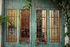 Old door | Cartagena (gaalvarezc) Tags: photography streetphotography stphotographia color colombia canon cartagena door plants old oldtown green texture