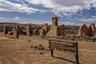 Ruins near Quorn  homestead 1