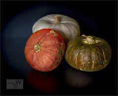 Squash. (ziggystardust111) Tags: pumpkin squash food colourful