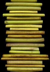 58763.01 Levisticum officinale (horticultural art) Tags: horticulturalart levisticumofficinale levisticum lovage stems