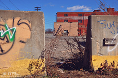 Between Barriers (Hi-Fi Fotos) Tags: city urban concrete graffiti blight boring paint weeds barrier opening lot building nikon d5000 hififotos hallewell