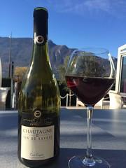 IMG_4200 (menthineraih) Tags: vin