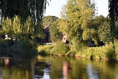 At River Severn, Bridgnorth, Shropshire (Manoo Mistry) Tags: nikon nikond5500 tamron tamron18270mmzoomlens slr river riversevern shropshire bridgnorth midlands riverbank birminghampostandmail