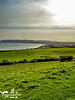 Sandown Bay Countryside (SLHPhotography1990) Tags: 2017 april sandown culver downs walk isleofwight isle wight area natural beauty outstanding country countryside rural landscape bay pier sea water fields native british flowers