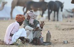 Guftagu. . . Tête-à-tête (Swaranjeet) Tags: swaranjeet singh photographer thane mumbai swaranjeetsingh india indian sjs