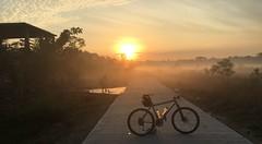 Myanmar, Yangon Region, Northern District, Htantabin Township, Kywe Ku Village Tract (Die Welt, wie ich sie vorfand) Tags: myanmar burma bicycle cycling sepeda moots rigormootis yangonregion yangon rangoon northerndistrict htantabintownship htantabin kyweku