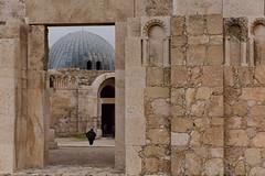 Jabal al-Qal'a (The Citadel), Jordan, January 2018 034 (tango-) Tags: giordania jordan middleeast mediooriente الأردن jordanien 約旦 ヨルダン citadel amman