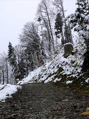 Hike path in Switzerland (Carandoom) Tags: 2017 switzerland pilatus neige paysage ciel arbre montagne mountain forêt forest sony rx10 hike path